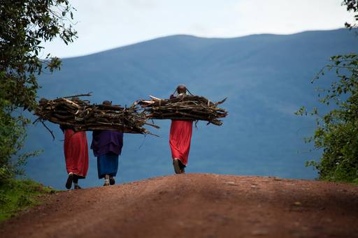 Three people carrying wood at their back walking towards the mountain