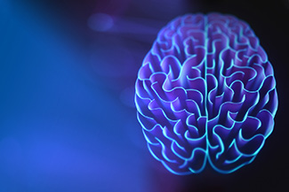 Brain - Illustration in blue color