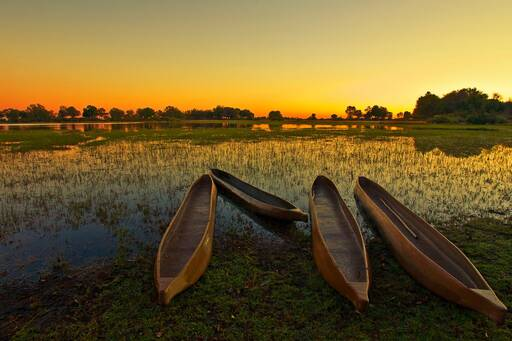 Wooden boats at Okavango Delta during dawn