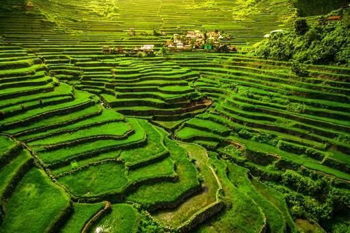 Batad Rice Terraces North Luzon Philippines