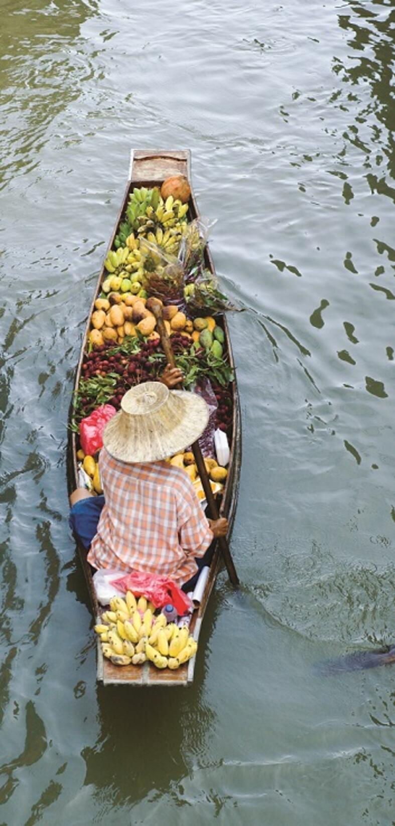 Farmer on a boat filled with fruit