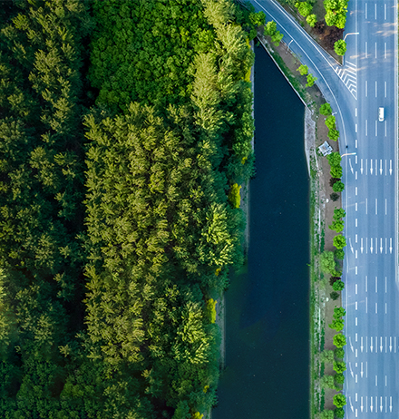 Top-view of diverging road beside green trees and water