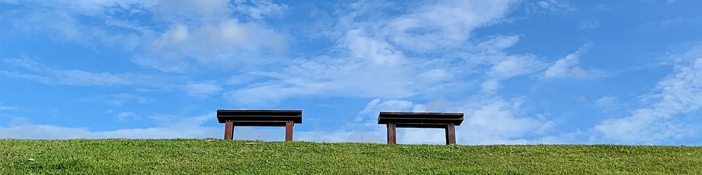 Two benches on grass