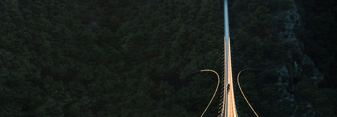 Wooden rope hanging bridge over forest