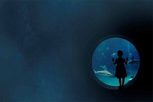 Girl standing outside a round window looking at fishes in aquarium