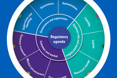 Regulatory Wheel