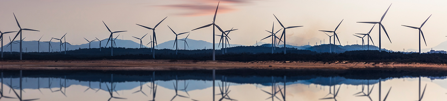 Wind turbines and their reflection in water