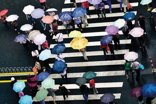 crowd crossing a street carrying open umbrellas