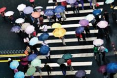 KPMG IFRS Newsletter: Insurance publication image: crowd crossing a street carrying open umbrellas.