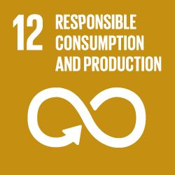 SDG icon 12 Responsible Consumption and Production