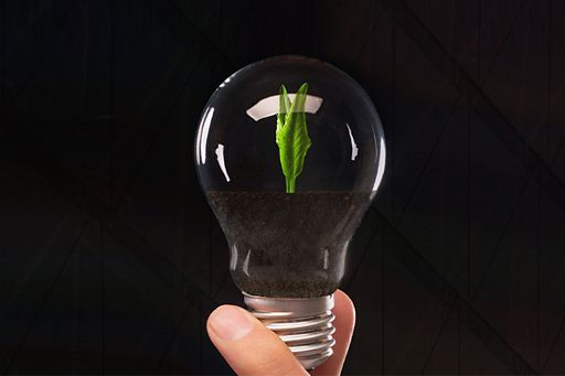 sustainability reporting - the value creation journey