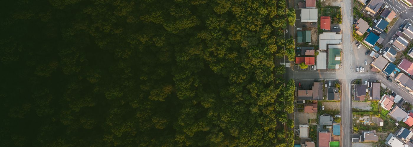 Aerial view of houses and forest - Trust planning
