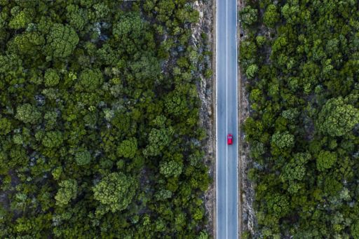 Aerial view of a red car that runs along a road flanked by a green forest