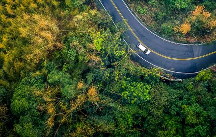 Car in rural road in deep rain forest with green tree forest view from above