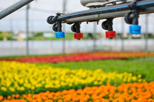 Automated watering system in greenhouse
