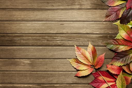 Pensions regulatory round-up - autumn leaves on wood