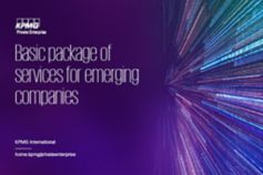 Basic package of services for emerging companies