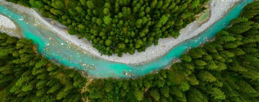Blue river flowing through dense green forest top view
