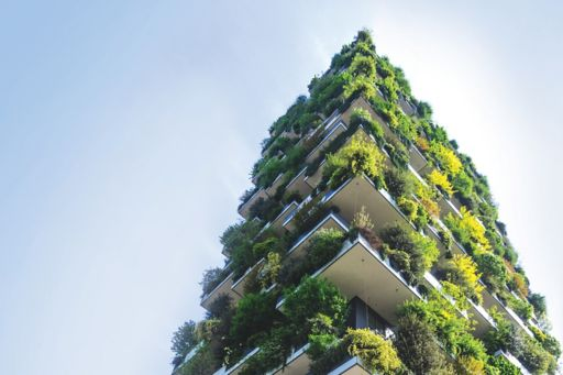 Building with vertical green plants