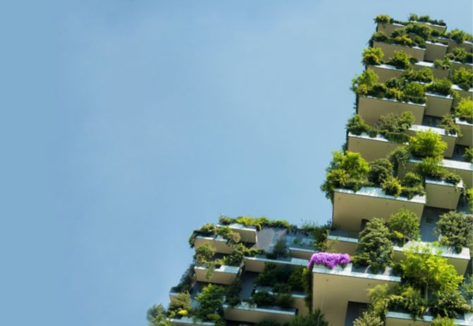 Building with green plants against the blue sky