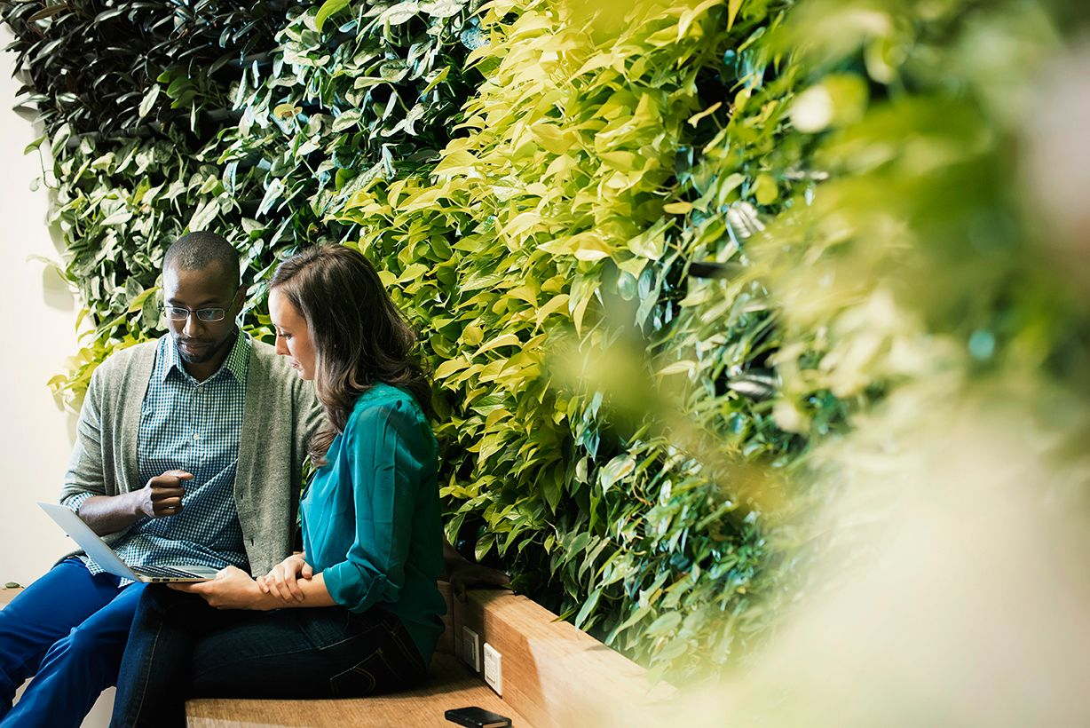 Businessman and woman sitting in front of green plant wall