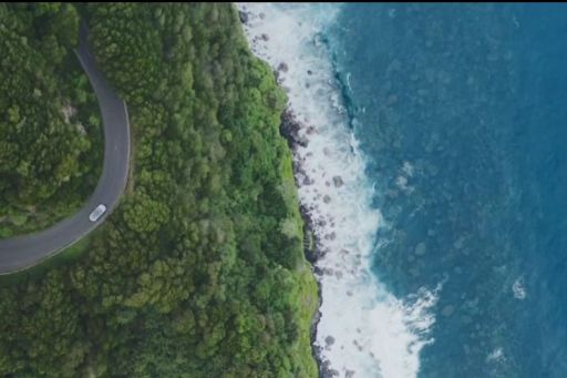 Car on a road between forest and sea