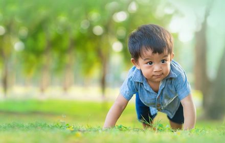 Small child with black hair crawling/ playing on grass in park