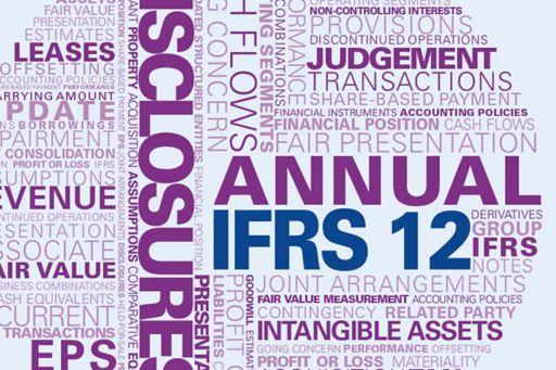 Guide to annual financial statements – IFRS 12 supplement