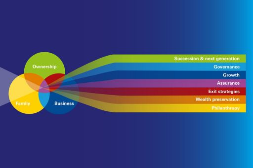 Family businesses model graphic