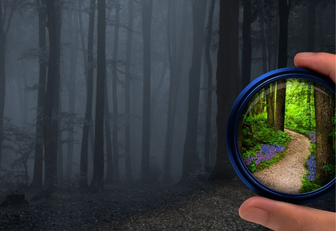Forest track through circular lens