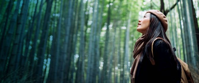 Asian women in bamboo forest