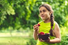 Small girl eating strawberries