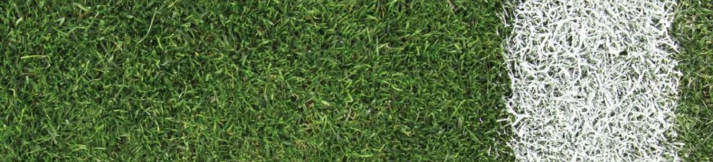 grass-on-football-ground