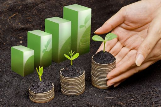 hands holding trees growing on coins in sequence