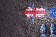 Brexit: The known knowns and known unknowns