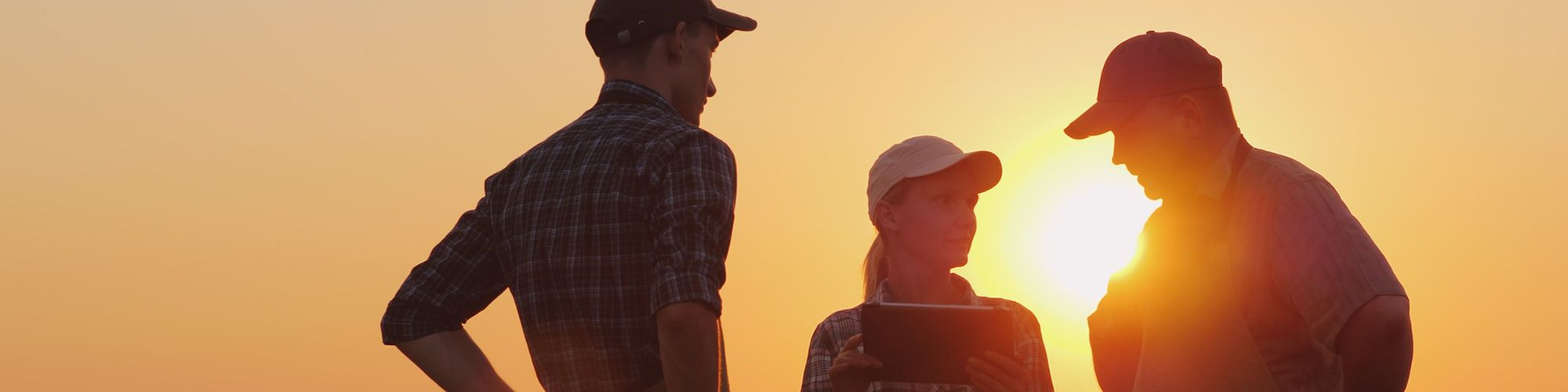 3 farmers in conversation at sunset