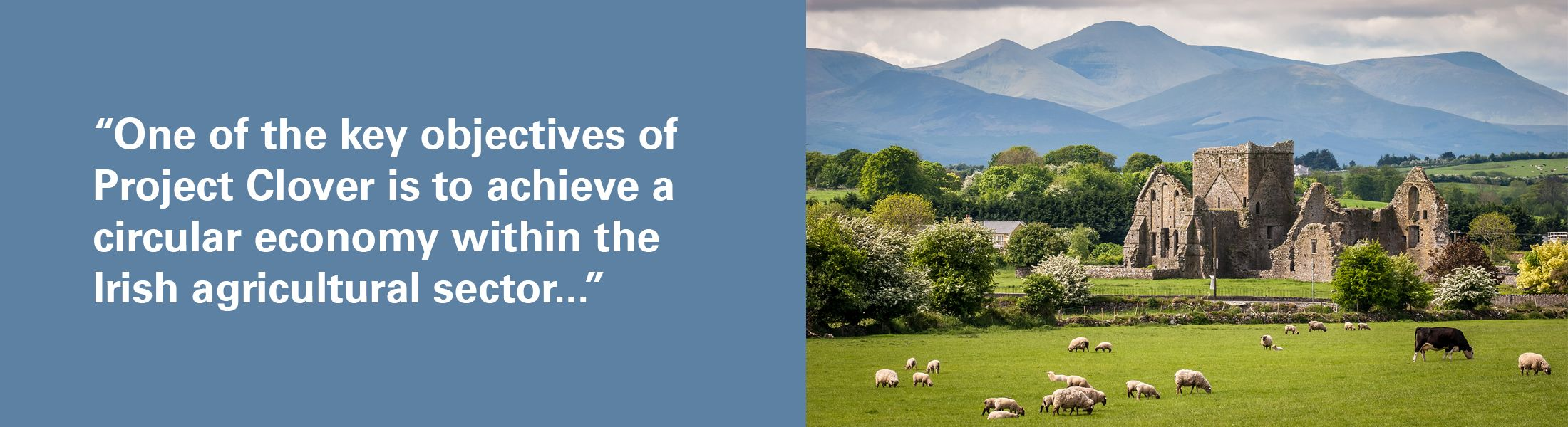 "Sheep grazing in front of ruins and mountains with quote overlaid, ""One of the key objectives of Project Clover is to achieve a circular economy within the Irish agricultural sector"""