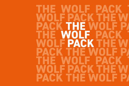 How did a wolfpack coalesce to solve problems quickly?