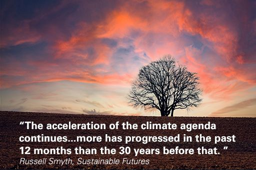 """Tree with quote overlaid """"more has progressed in the past 12 months than the 30 years before that"""""""