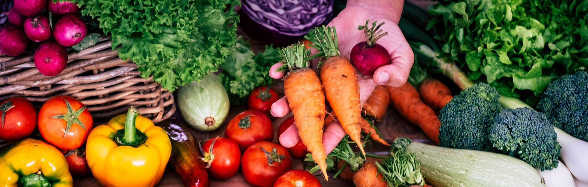 Hand holding carrots with backdrop of vegetables