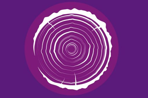 Illustration of a tree trunk with growth rings