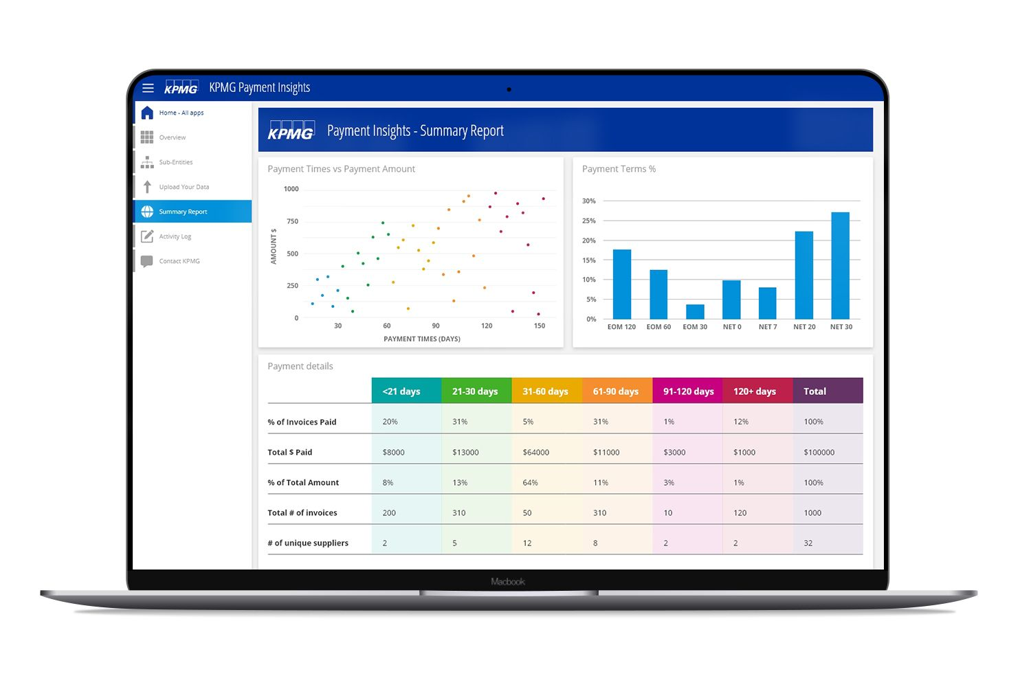 KPMG Payment Insights solution summary report example