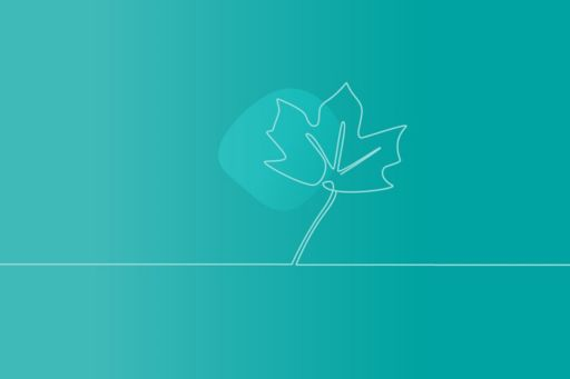 turquoise background with leaf sketch
