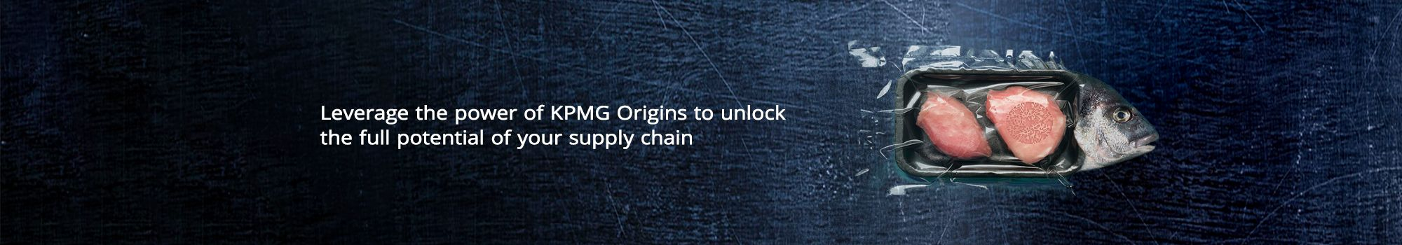 Leverage the power of KPMG Origins to unlock the full potential of your supply chain.