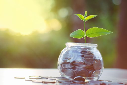 money-coins-in-pot-with-plant