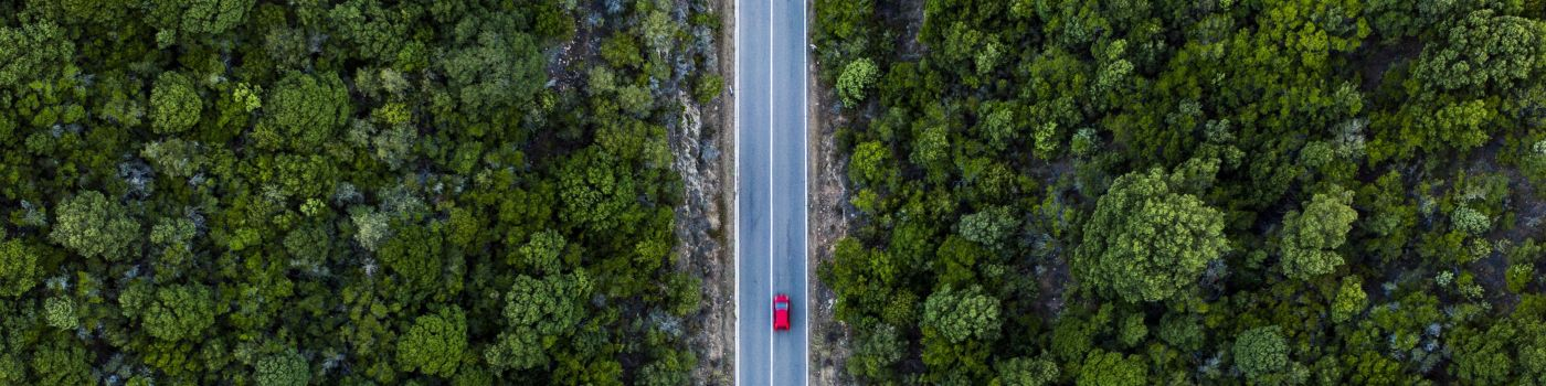 road-green-with-car-red