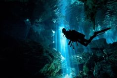 Subscribe - diver