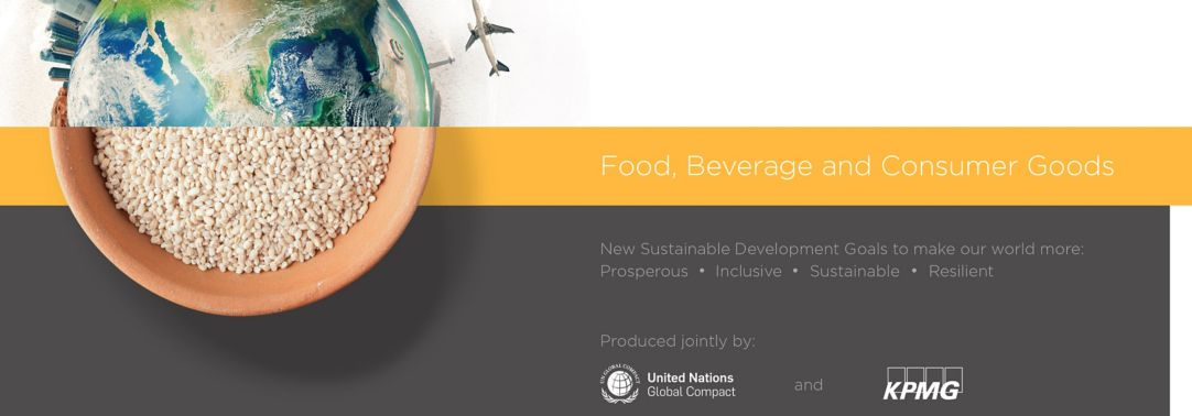 SDG Industry Matrix for Food, Beverage and Consumer Goods