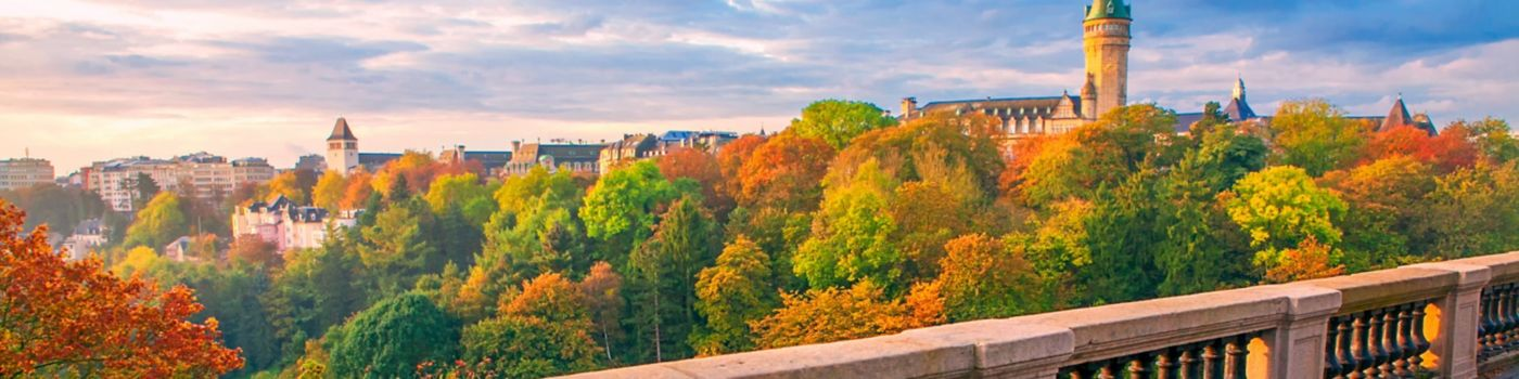 Side view of urban colourful trees under blue sky Luxembourg
