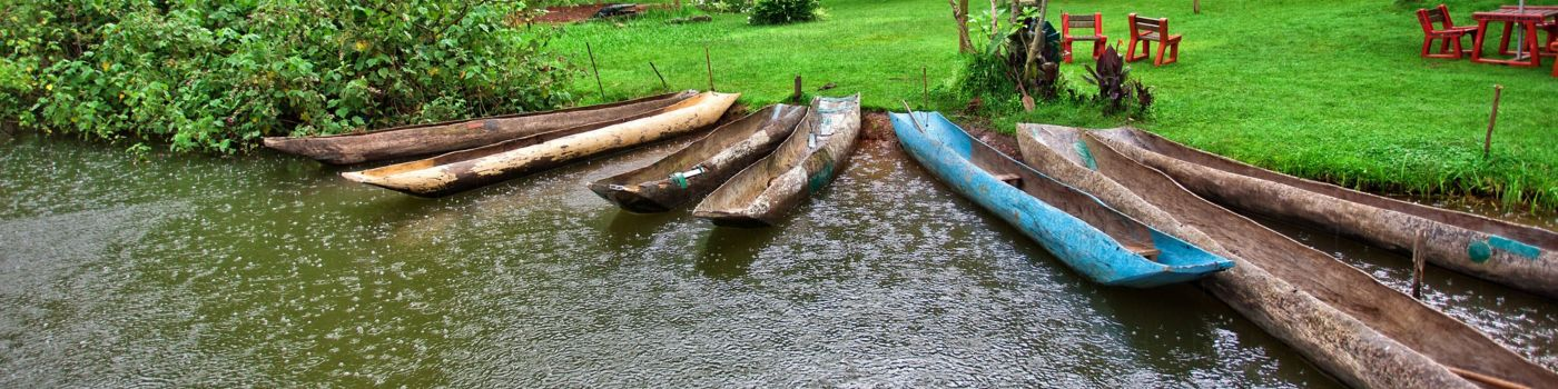 Thin boats in water near green grass trees